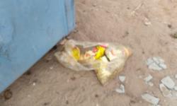 Flagrante: morador registra foto de itens da cesta básica municipal jogado no lixo em Praia de Marobá