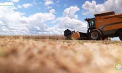 Bayer cria iniciativa para levar gratuitamente informações e conteúdos de alta qualidade a agricultores
