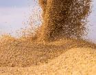 No Plano Safra 2021/22 a contratação do crédito rural tem alta de 36%