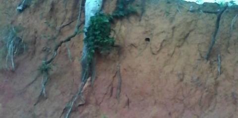 Casal corre risco de morrer soterrados em Itaipava