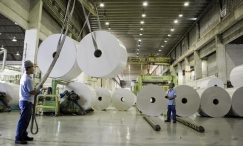 Empresa pode implantar fábrica de papel em Presidente Kennedy