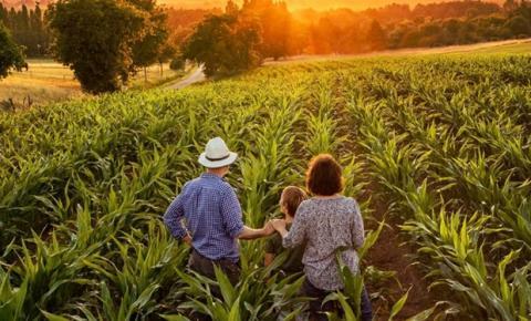 Agricultura de subsistência: o que é e como funciona no Brasil?