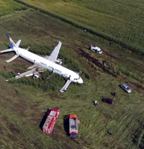 Avião com mais de 200 a bordo faz pouso de emergência em milharal após colidir com pássaros na Rússia